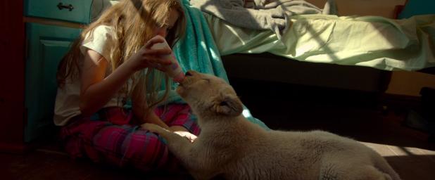 Кадры из фильма Девочка Миа и белый лев (Mia et le lion blanc)